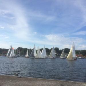 Regatten in Rostock
